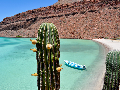 Kostarika, Mehika in Ekvador so top potovanja za zimo 2022
