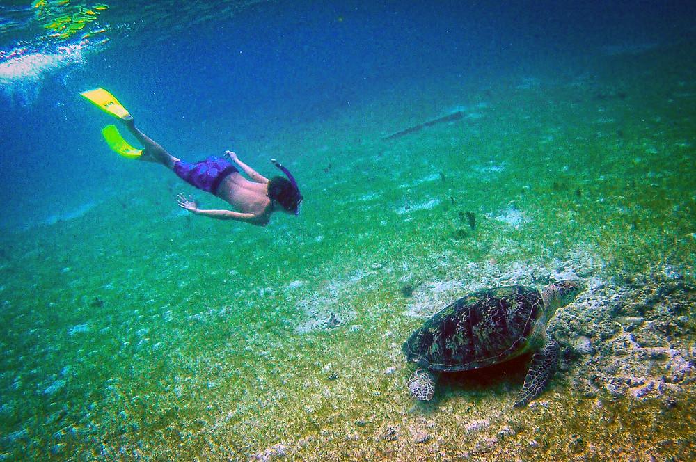 Otrok snorkla z želvo na dnu morja