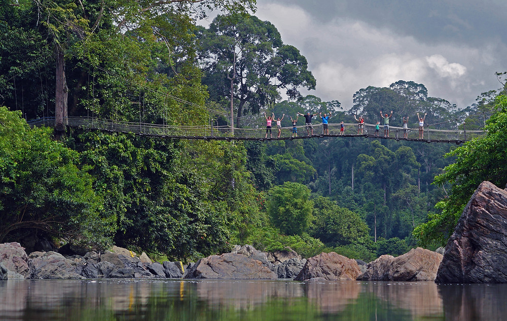 Group of people on a hanging bridge in a jungle