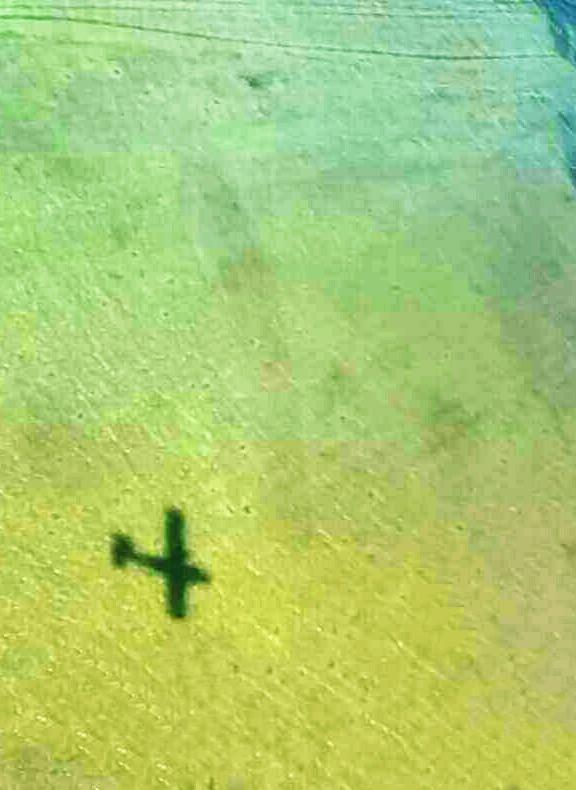Senca mini letala na dnu lagune v Belizu