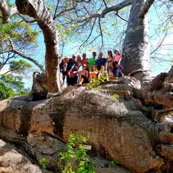 10-baobab-kwale.jpg