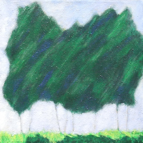 Pine Tree Breeze #4