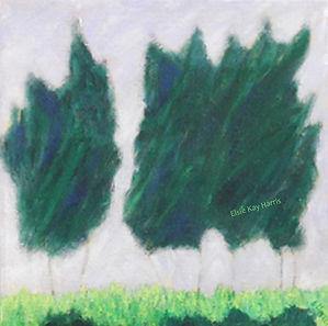 Pine Tree Breeze #6-2-72W.jpg