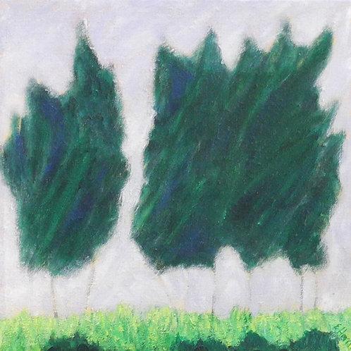 Pine Tree Breeze #6