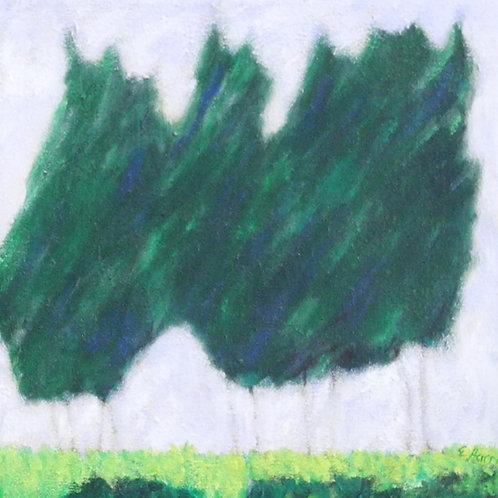 Pine Tree Breeze #5