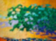 Leafing OutW72.jpg