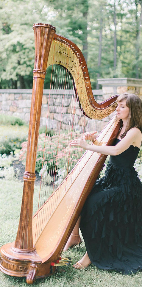 Harpist DC VA MD
