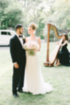 Harpist for Weddings DC Northern VA