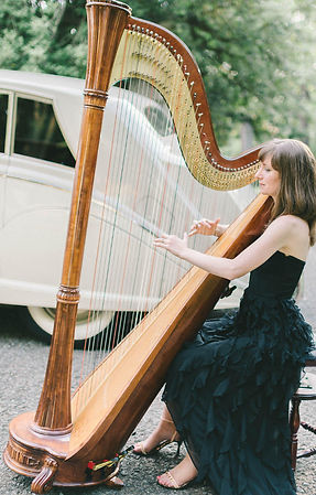 Harpist Dc, Harpist Northern VA