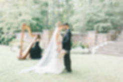 Harpist for Weddings DC VA MD