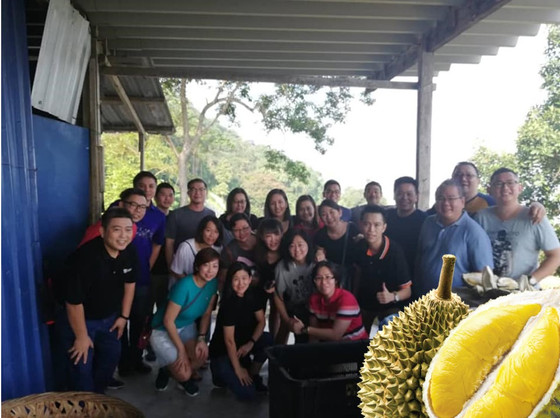 An authentically Malaysian kind of company event: Durian feast