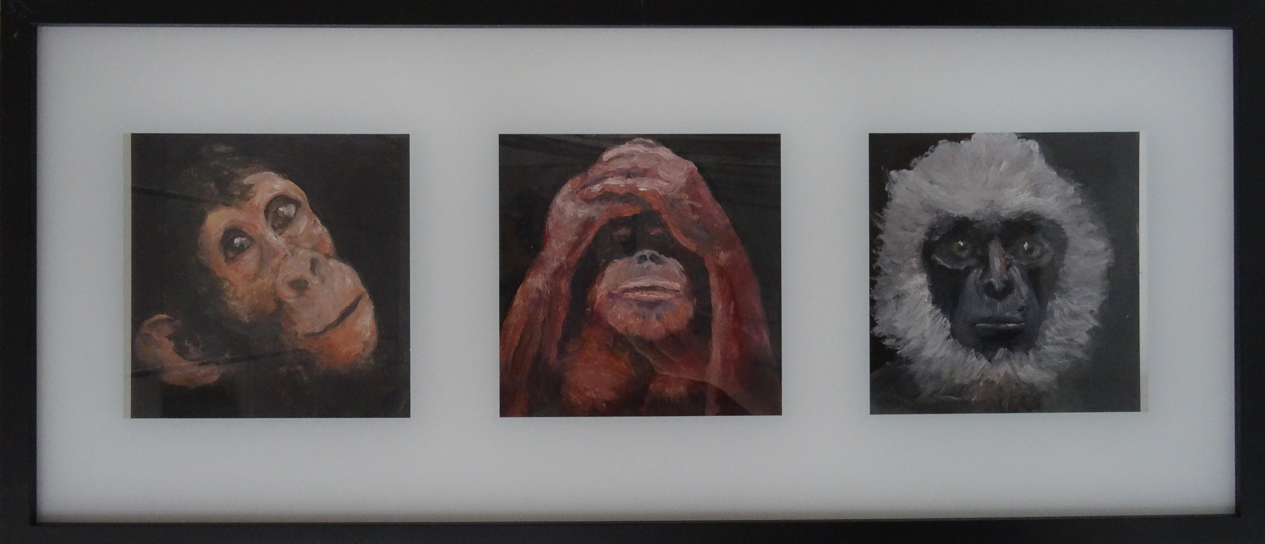 Trois singes savants