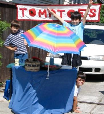 The Tomato Boys, BLOG