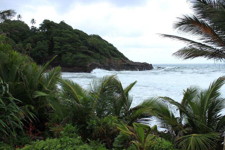 Dominica & Trinidad