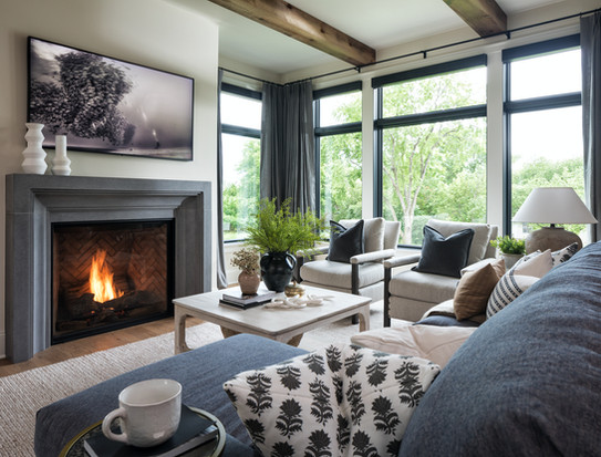 Modern Transitional - Great room