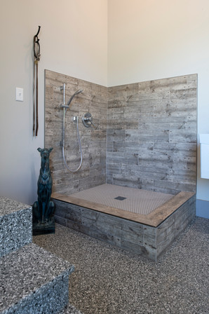 Modern Ranch Dog Shower