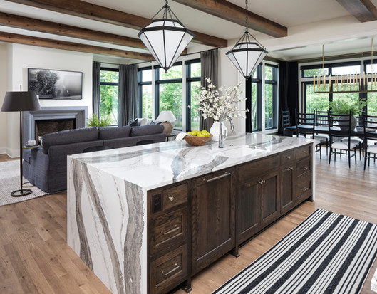 Modern Transitional - Living spaces