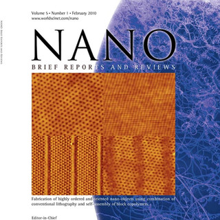 NANOSCALE PATTERNING IN BLOCK COPOLYMER THIN FILMS (01 February, 2010)