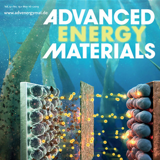Metamorphosis of Seaweeds into Multitalented Materials for Energy Storage Applications (May 16, 2019)
