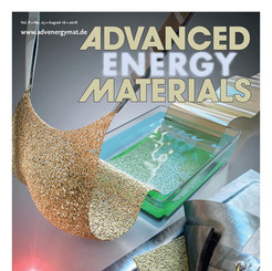 Highly Stretchable Separator Membrane for Deformable Energy‐Storage Devices (16 August, 2018)