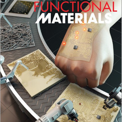 Stand-Alone Intrinsically Stretchable Electronic Device Platform Powered by Stretchable Rechargeable Battery (8 December, 2020)