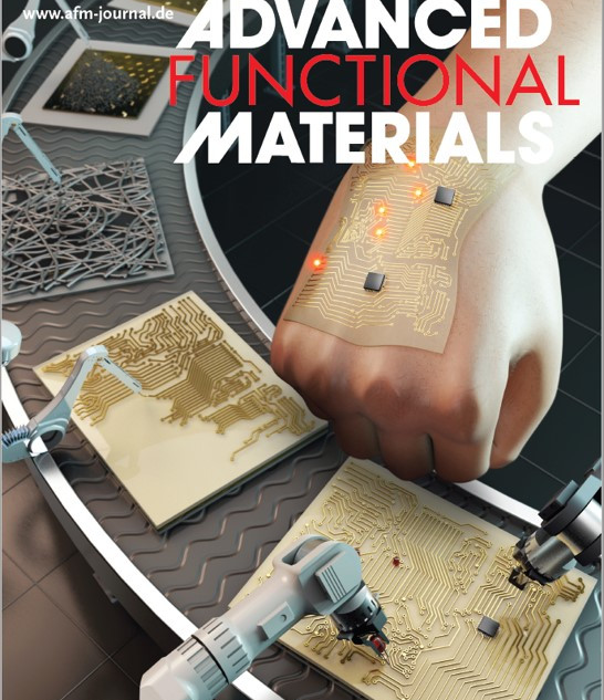 Stand‐Alone Intrinsically Stretchable Electronic Device Platform Powered by Stretchable Rechargeable Battery (8 December, 2020)