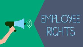 Updates from Employment NZ
