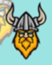 Vikings1.jpg
