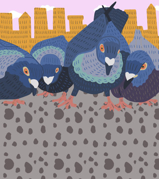 Pigeon Feast