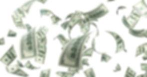 Finance Dr. Shelley Reciniello