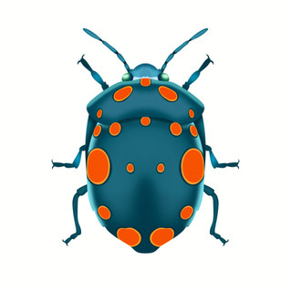 Physic Stink Bug