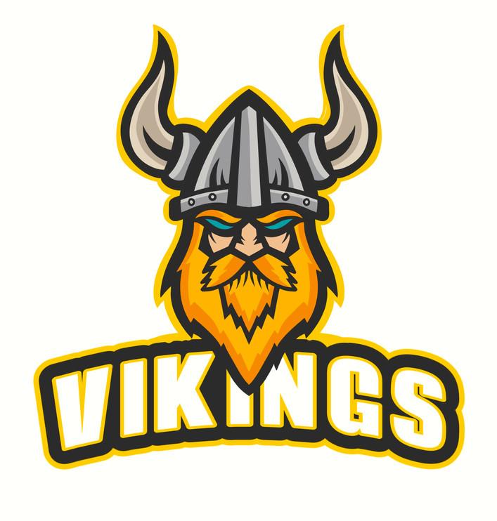 Vikings3.jpg