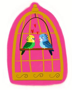 Parakeet Love