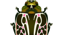 Green, White, Pink Beetle