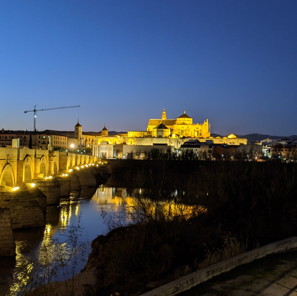 Night view of the Roman Bridge and the Mosque of Cordoba