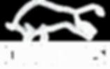 Company Logo Black Transparent.png