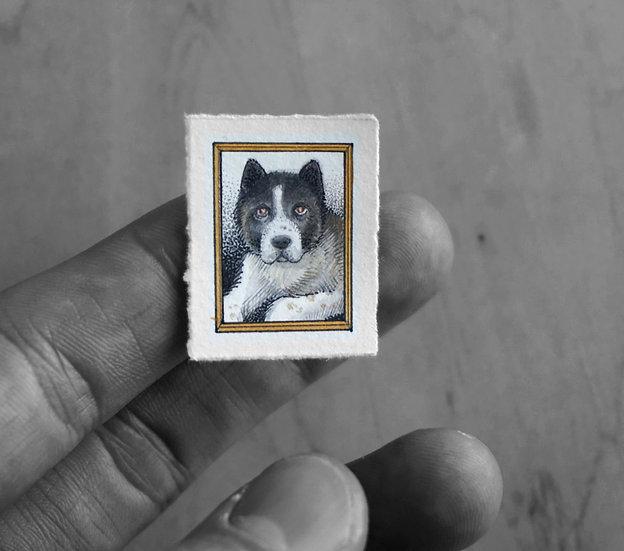 Custom Mini Pet Portrait