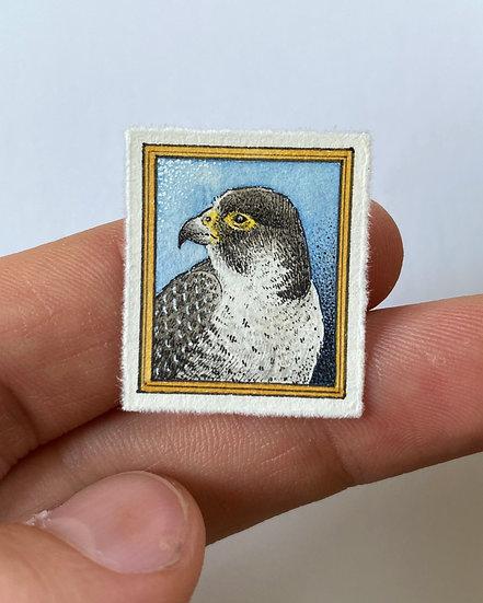 Falcon Tiny Drawing