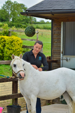 Chloe looks after her horse
