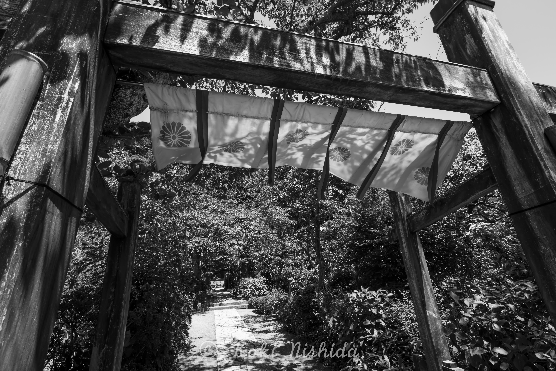Kamakura-2.jpg