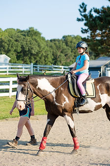 Image: A rider on horseback during a lesson.