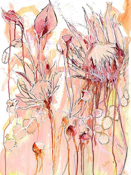 Protea Crush