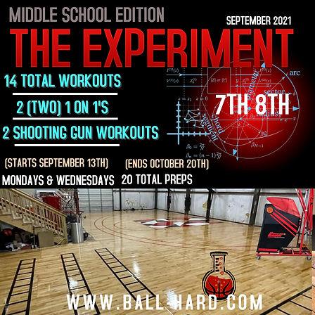 THE EXPERIMENT II (1).jpg