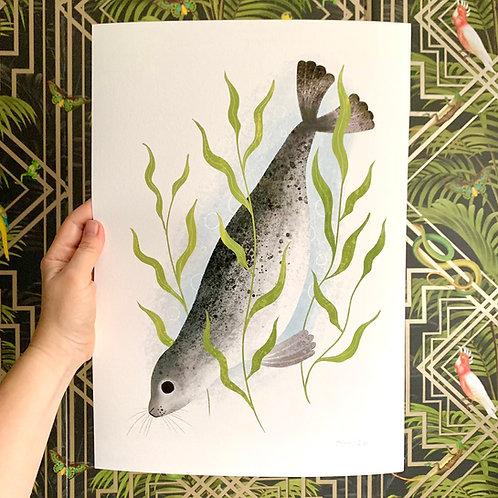 Seal Giclée Print