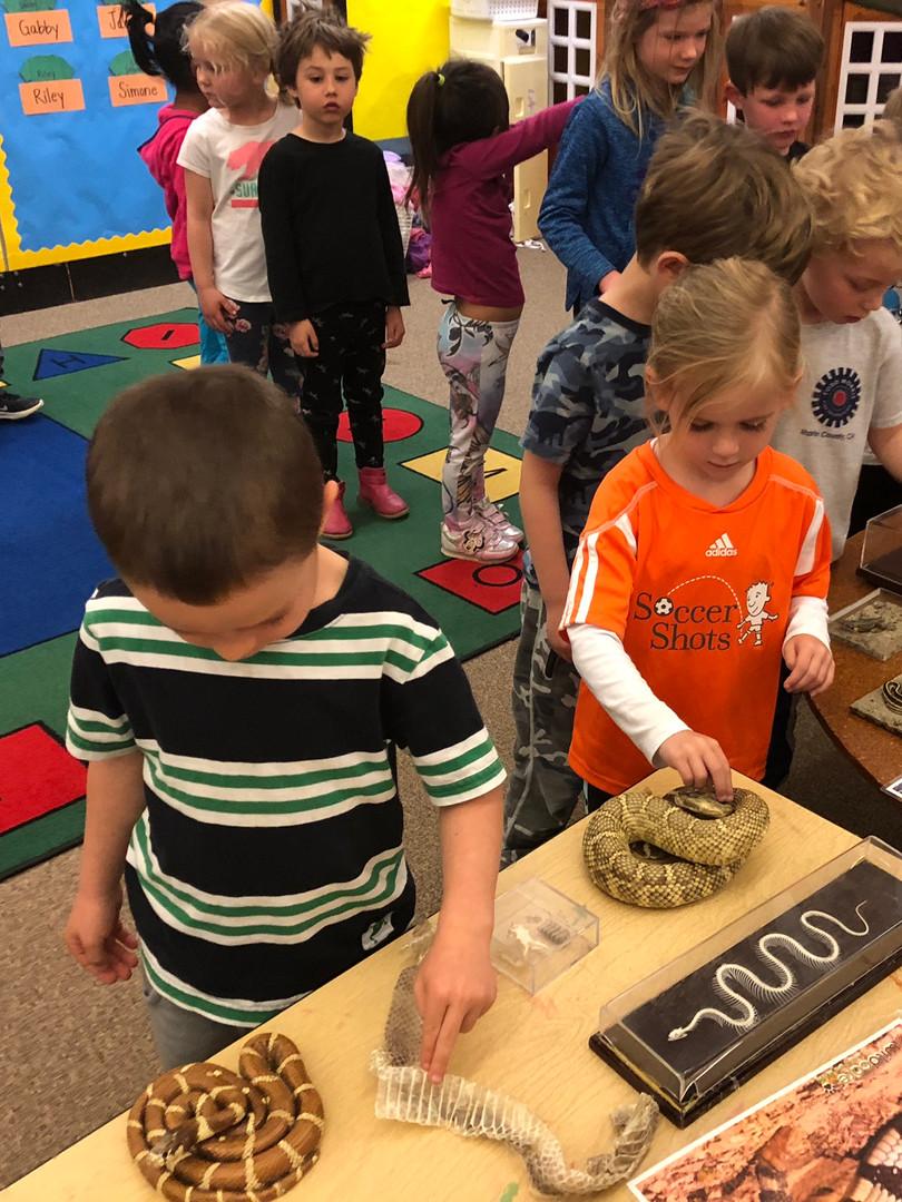 oakview preschool students wildcare