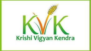 Sarkri jobs   Krishi Vigyan Kendra hiring for 2020   freejobalert