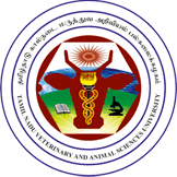 Tamil Nadu Government Jobs