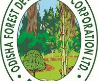 Odisha Forest Department Jobs | 146 vacancies