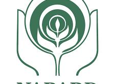 NABARD Hiring for multiple positions | online jobs | sarakari result |data entry jobs | worldfree4u