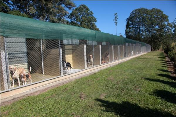 Dogs Love Aussie Pet Resort